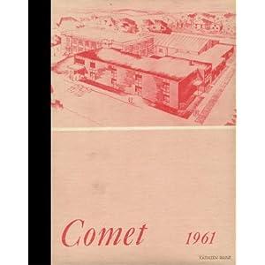 (Reprint) 1985 Yearbook: Wall Lake View Auburn High School, Lake View, Iowa Wall Lake View Auburn High School 1985 Yearbook Staff