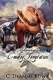 Cowboy Temptation - Colt and Cassy, C. Rowe, 1467941190