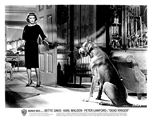 Dead Ringer original 8x10 photo 1964 Bette Davis faces fierce dog