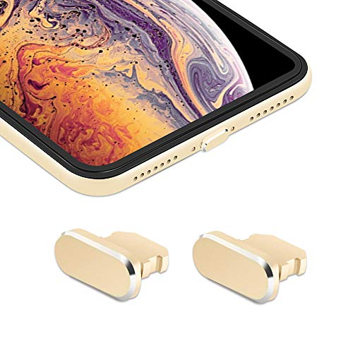 iMangoo [2 Pack] Anti Dust Plugs for iPhone Xs Max 8 Pin Charging Port Plug iPhone X S Max Anti-dust Pluggy with Easy Storage Case, iPhone 10s Charge Port Plug for Apple iPhone XR XS Max Silver