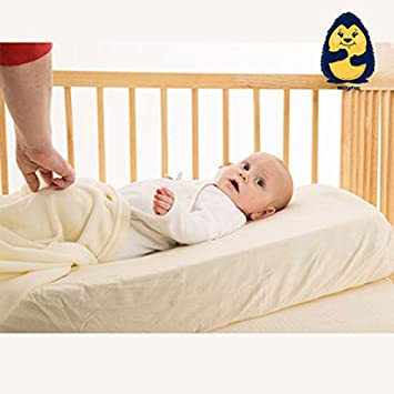 huge selection of af092 e1c73 The Wedgehog® Baby Cot Wedge and Reflux Pillow for Reflux and Congestion  (Standard Cot - 60cm) - Includes Free Bundled Reflux eBook