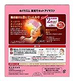 Kao MEGURISM Health Care Steam Warm Eye Mask,Made