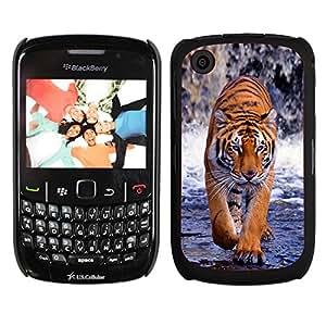 Print Motif Coque de protection Case Cover // V00000766 Patrón de piel animal tigre // Blackberry 8520 9300