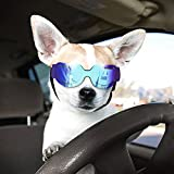 Namsan Cat Sunglasses - Dog Goggles Dog Sunglasses for Small Dogs and Cats,Blue