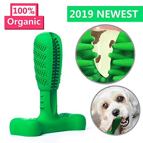 AUSHINE Dog Toothbrush Stick Brushing Stick Dog Toothbrush Dog Tooth Brush Brite Bite for Dogs Pets Oral Care Puppy Toys Chew Toy Bone Chewers (Middle, Green)