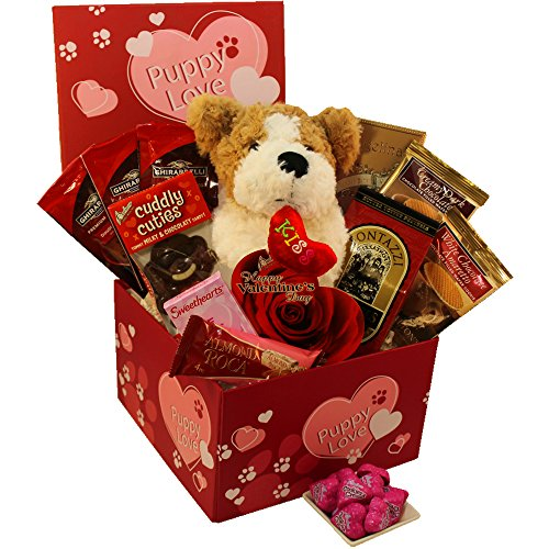 Puppy Love Care Package Gift Box