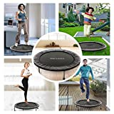 ANCHEER Mini Fitness Trampoline for Adults and