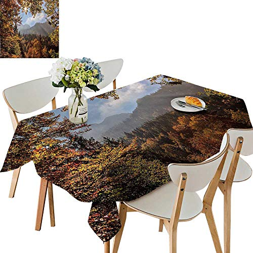 UHOO2018 Polyester Square/Rectangle at Autumn Forest in Bavaria Alps Germany Rural Scenery Picture Golden Green Orange Kitchen Washable,23 x 23inch