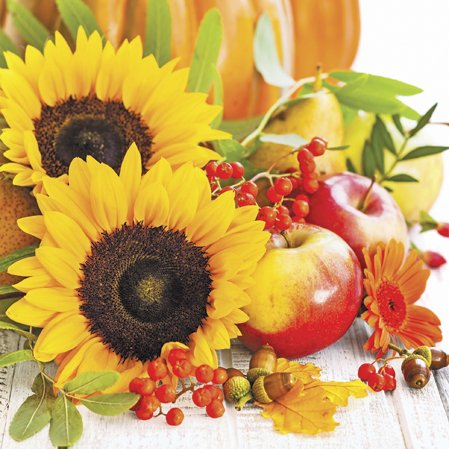 - Paper Luncheon Napkins Autumn Composition Sunflowers and Apples 40pcs