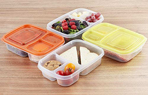 amazonbasics bento lunch box containers set of 4 buy online in uae kitchen products in. Black Bedroom Furniture Sets. Home Design Ideas