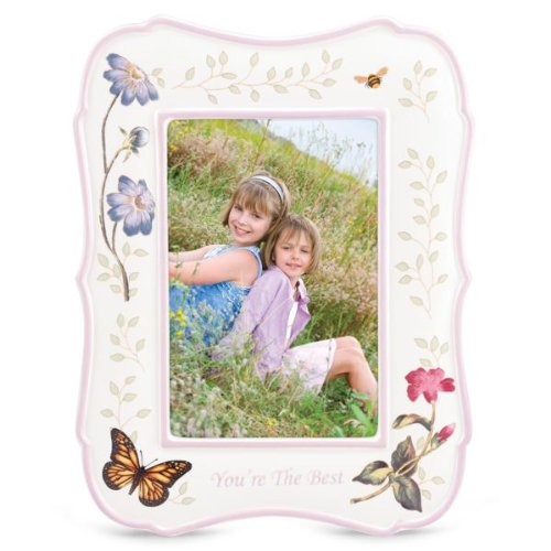 Lenox Butterfly Meadow You're the Best 4'' x 6'' Frame