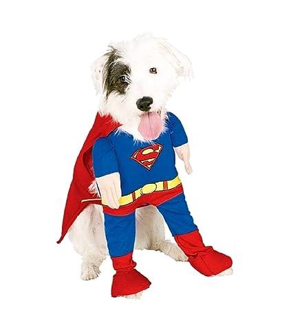 KIRALOVE - Disfraz de Superman para Hombre de Acero - Perro - Mod ...