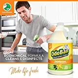 OdoBan Ready-to-Use 32oz Spray Bottle 2-Pack and