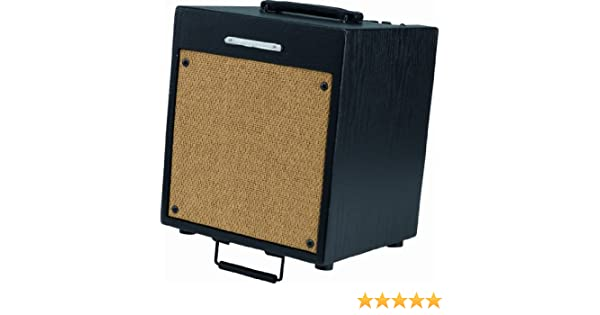 Amazon.com: Ibanez T35 Troubadour 35W 1x10 Acoustic Guitar Amp: Musical Instruments