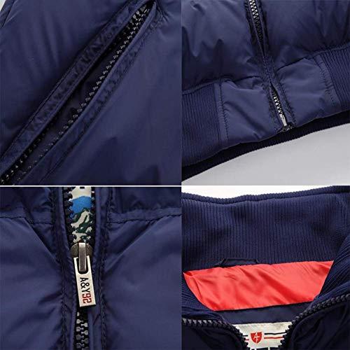 Automne Duvet Manches Royal Sans Jeunes Slim Sport Taille Pour Bleu Hommes Gilet Xxl Col Taille Body S Gris gilet En Royal Décontracté Haut coloré couleur Montant Fuweiencore hiver pzwqfAxn