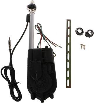 Xuniu Antena universal para coche, 12 V, antena eléctrica ...
