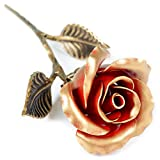 Hand Forged Iron Rose - 11th / 6th Year Wedding Anniversary Gift for Her/Red Metal Rose Steel Rose