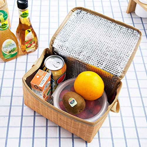 Gotian Portable Insulated Thermal Cooler Lunch Box Tote Storage Bag Picnic Container - Perfect for Picnic, Outdoor Activities, Travel, Work Lunches - 2x Lunch Packet (20x14x12cm) ()