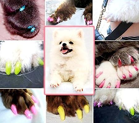 Cobertores para uñas de gatos y perros; fundas antiarañazos; de Yeah67886: Amazon.es: Productos para mascotas