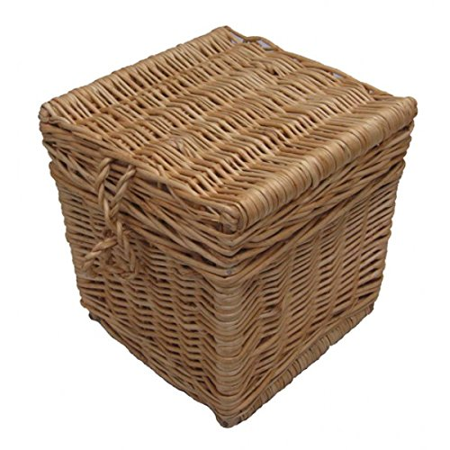 Biodegradable cremación cenizas urna/Casket - tamaño adulto ...