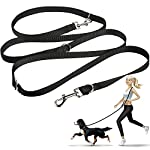 oneisall Hands Free Dog Leash,Multifunctional Dog Training Leads,8ft Nylon Double Leash for Puppy,Small & Large Dogs 8