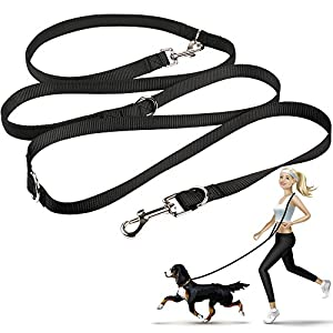 oneisall Hands Free Dog Leash,Multifunctional Dog Training Leads,8ft Nylon Double Leash for Puppy,Small & Large Dogs 2