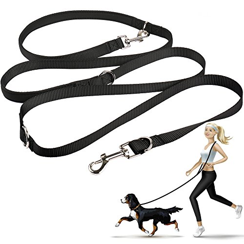 - oneisall Hands Free Dog Leash,Multifunctional Dog Training Leads,8ft Nylon Double Leash for Puppy,Small & Large Dogs
