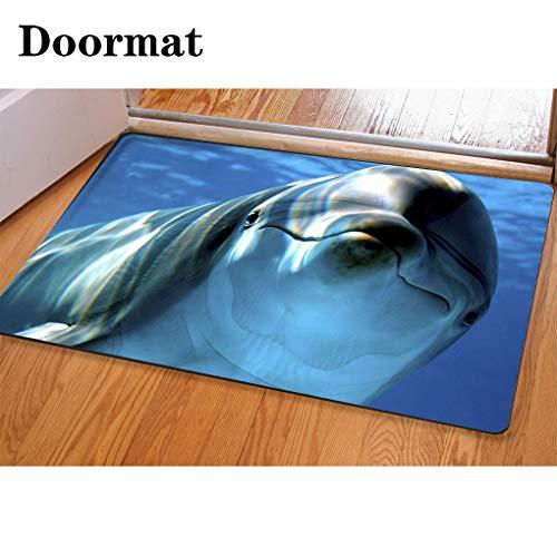 HooMore 3D Printing and Dyeing,Bathroom Carpet, Door mat,Delfino Flannel Foam Shower mat, Absorbent Kitchen Door -