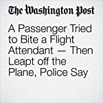 A Passenger Tried to Bite a Flight Attendant — Then Leapt off the Plane, Police Say | Avi Selk