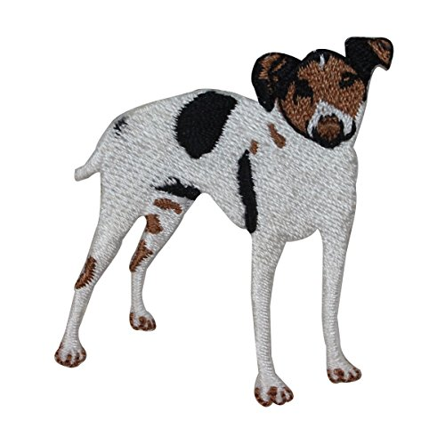 ID 2772 Rat Terrier Patch Dog Puppy Breed Hunting Embroidered Iron On Applique
