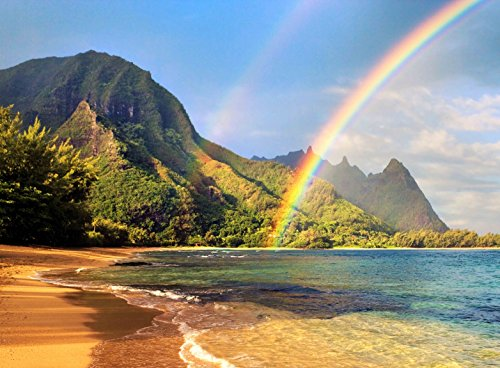 Adult Jigsaw Puzzle Kauai Rainbow Beach Ocean Hawaii USA 500-Pieces