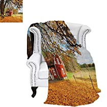 FallFlannel blanketQuaint Traditional Red Swedish House Tranquil Environment Cottage Countryside Woodscouch Blanket 90x70 Multicolor