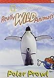 Really Wild Animals:Polar