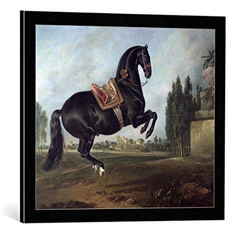 kunst für alle Framed Art Print: Johann Georg Hamilton A Black Horse Performing The Courbette - Decorative Fine Art Poster, Picture with Frame, 23.6x19.7 inch / 60x50 cm, Black/Edge Grey