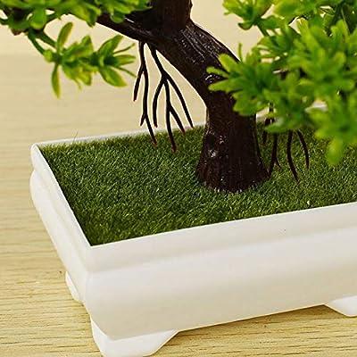 Planta artificial para bons/ái de madera de pino verde alf/éizar patio de Zunbo para oficina