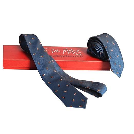 Gimitunus - Corbata de Mujer con diseño de Mariposa, en Caja de ...