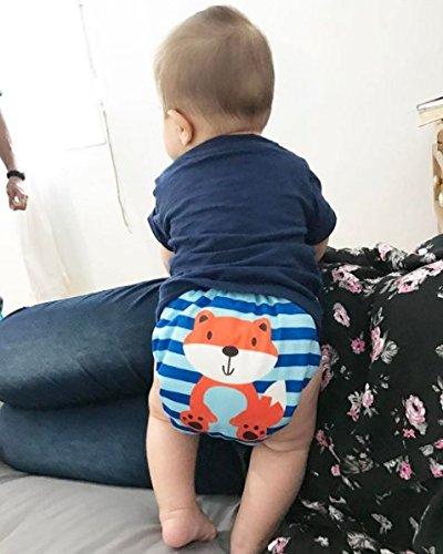 Alva Baby New Design Reuseable Washable Pocket Cloth Diaper 6 Nappies + 12 Inserts 6DM23 by ALVA (Image #8)