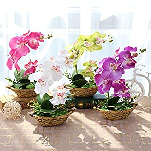 Artificial Orchid Plant - 1 X Artificial Vivid Flower Bonsai Butterfly Orchid Potted Plant With Cement Flowerpot Wedding - Orchid Canvas Clips Wall Plant Plants Blue Artificial Pots Flower 66