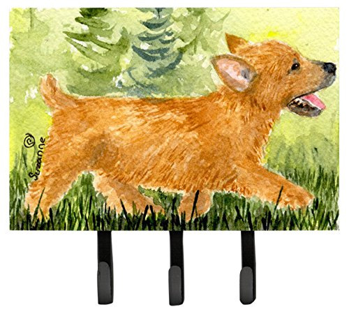 Large Carolines Treasures SS8884TH68 Norwich Terrier Leash Holder or Key Hook Multicolor