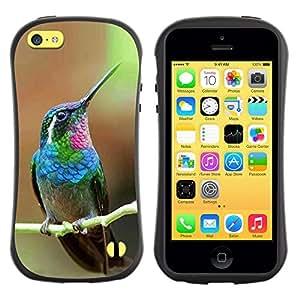 Suave TPU GEL Carcasa Funda Silicona Blando Estuche Caso de protección (para) Apple Iphone 5C / CECELL Phone case / / hummingbird tiny cute tropical exotic /