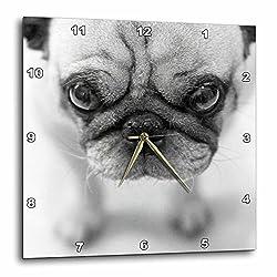 TNMGraphics Pug Wall Clock, 10 by 10-Inch