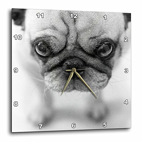 3dRose TNMGraphics Pug Wall Clock, 10 by 10-Inch