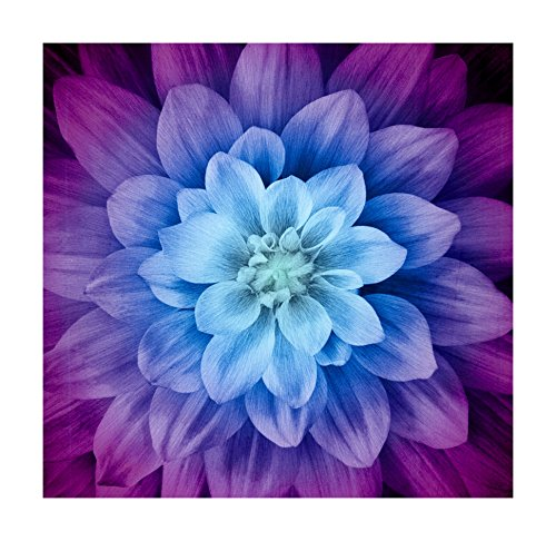 Hoffman Fabrics 0560465 Hoffman Digital Dream Big Flower 43inPanel Aurora, ()