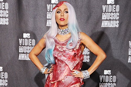 - Historical Photo Collection 8 x 10 Photo Lady-Gaga-Meat-Dress-2010-Billboard On High Qquality Fiji Film Paper