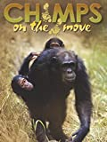 Chimps on the Move