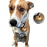 Personalized Mini Oak Barrel Dog Collar (2.25 Inches)