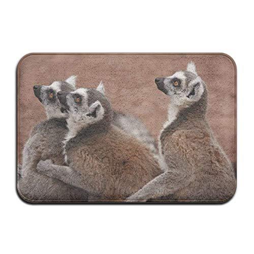 Brown Lemurs Zoo Home Door Mat Super Absorbent Slide-Proof Front Floor Mat,Soft Coral Memory Foam Carpet Bathroom Rubber Entrance Rugs for Indoor -