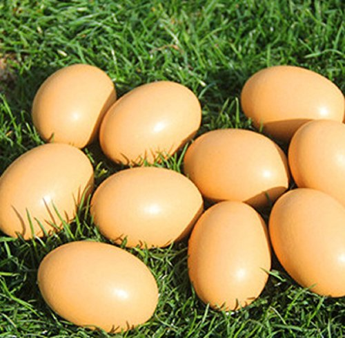 YunKo 6Pcs Wooden Faux Fake Nest Eggs