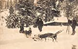 Real Photo Postcard Movie Camera Filing Men, Dogs, Snow Sled in Mountains~110651