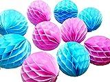 Daily Mall 10Pcs 8 inch Art DIY Tissue Paper Honeycomb Balls Party Partners Design Craft Hanging Pom-Pom Ball Party Wedding Birthday Nursery Decor (Blue Pink)